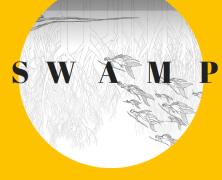 17 — Swamp